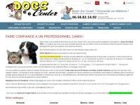 Dogs center